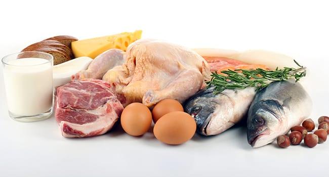 Le proteine | Guida nutrizionale - Vicodellaforma