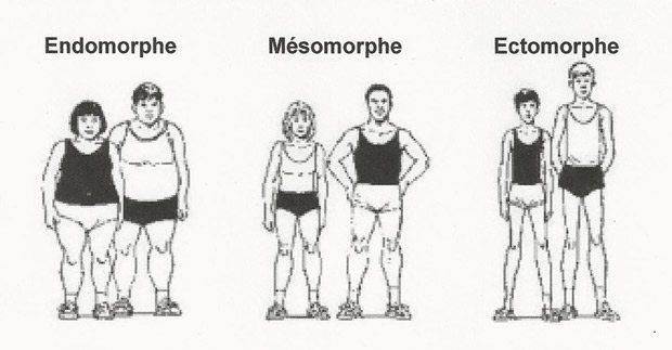morphologie-comment-grossir2