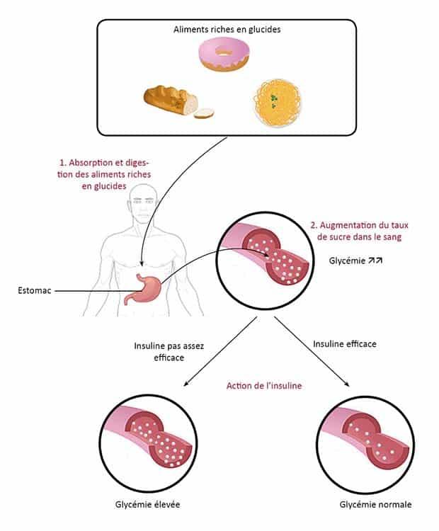 chrome-pour-maigrir-resistance-insuline