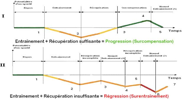 the importance of recovery in the resumption of sport
